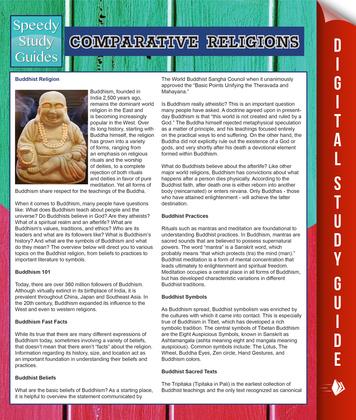 Comparative Religions (Speedy Study Guides)