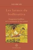 Les Larmes du Bodhisattva