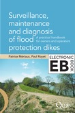 Surveillance, Maintenance and Diagnosis of Flood Protection Dikes