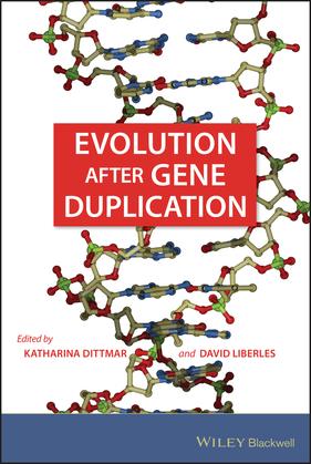 Evolution after Gene Duplication