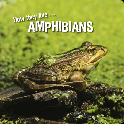 How they live... Amphibians
