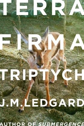 Terra Firma Triptych