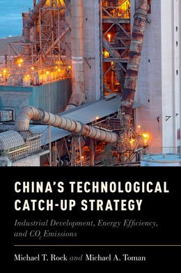 Chinas Technological Catch-Up Strategy: Industrial Development, Energy Efficiency, and CO2 Emissions