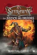 La justice des druides
