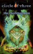 The Challenge Box