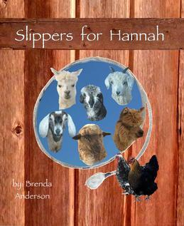 Slippers for Hannah