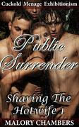 Public Surrender