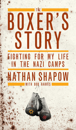 The Boxer's Story