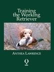 Training the Working Retriever