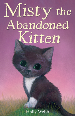 Misty the Adandoned Kitten