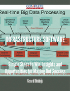 Infrastructure Software - Simple Steps to Win, Insights and Opportunities for Maxing Out Success