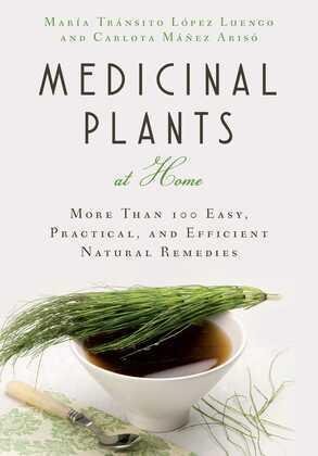 Medicinal Plants at Home