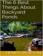 The 6 Best Things About Backyard Ponds