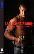 Last Slave Standing: Five erotic tales of submission and domination