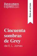 Cincuenta sombras de Grey de E. L. James (Guía de lectura)