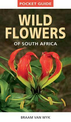 Pocket Guide to Wildflowers of South Africa