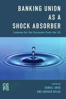 Banking Union as a Shock Absorber: Lessons for the Eurozone from the US