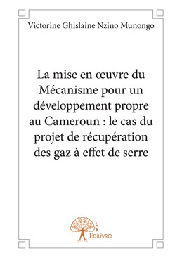 La mise en œuvre du Mécanisme pour un développement propre au Cameroun : le cas du projet de récupération des gaz à effet de serre