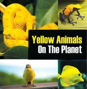 Yellow Animals On The Planet: Animal Encyclopedia for Kids