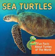 Sea Turtles: Fun Facts About Turtles of The World: Marine Life and Oceanography for Kids