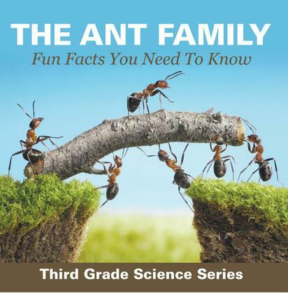 The Ant Family - Fun Facts You Need To Know : Third Grade Science Series