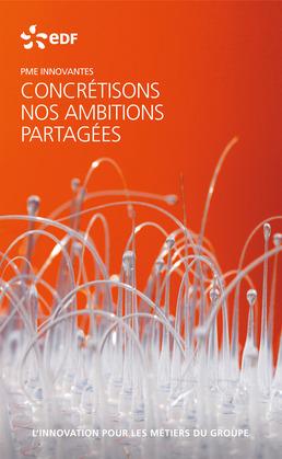 EDF PME innovantes - L'innovation pour les métiers du groupe