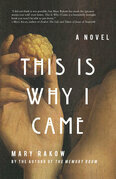 This is Why I Came: A Novel