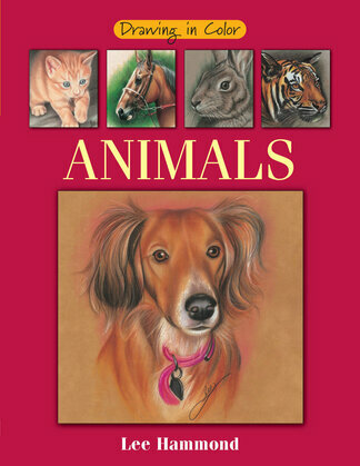 Drawing in Color - Animals