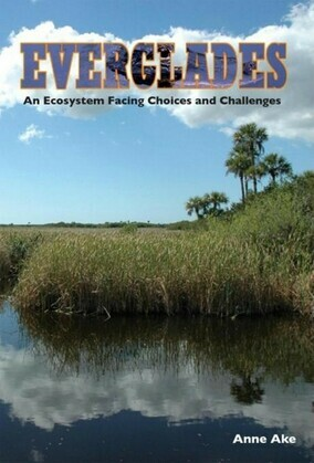 Everglades: An Ecosystem Facing Choices and Challenges