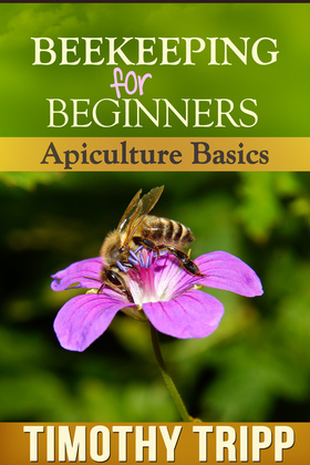 Beekeeping For Beginners: Apiculture Basics