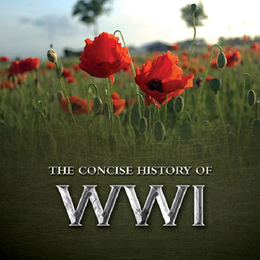 The Consise History of WWI