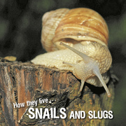 How they live... Snails and Slugs