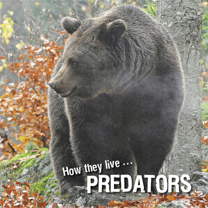 How they live... Predators