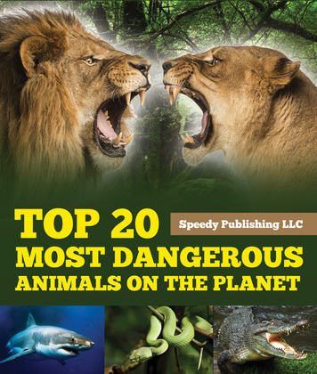 Top 20 Most Dangerous Animals On The Planet