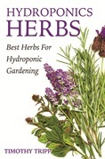 Hydroponics Herbs: Best Herbs For Hydroponic Gardening