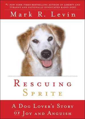 Rescuing Sprite