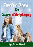 Twelve Days to Save Christmas