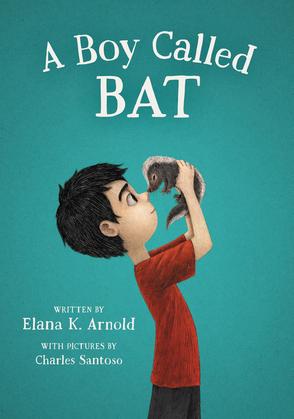 A Boy Called Bat