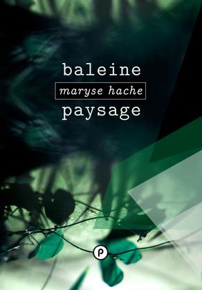 Baleine Paysage