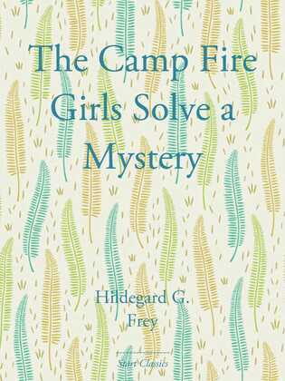 The Camp Fire Girls Solve a Mystery
