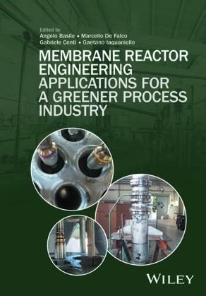 Membrane Reactor Engineering