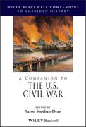 A Companion to the U.S. Civil War, 2 Volume Set