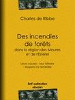 Des incendies de forêts dans la région des Maures et de l'Esterel (Provence)