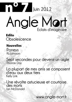 Angle Mort numéro 7
