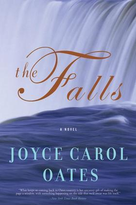Image de couverture (The Falls: A Novel)