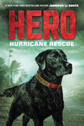 Hero: Hurricane Rescue