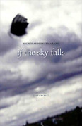 If the Sky Falls: Stories