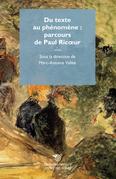 Du texte au phénomène : parcours de Paul Ricoeur