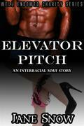 Elevator Pitch (Interracial Black MM/White F Erotic Story)