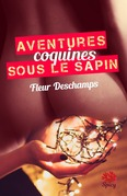 Aventures coquines sous le sapin